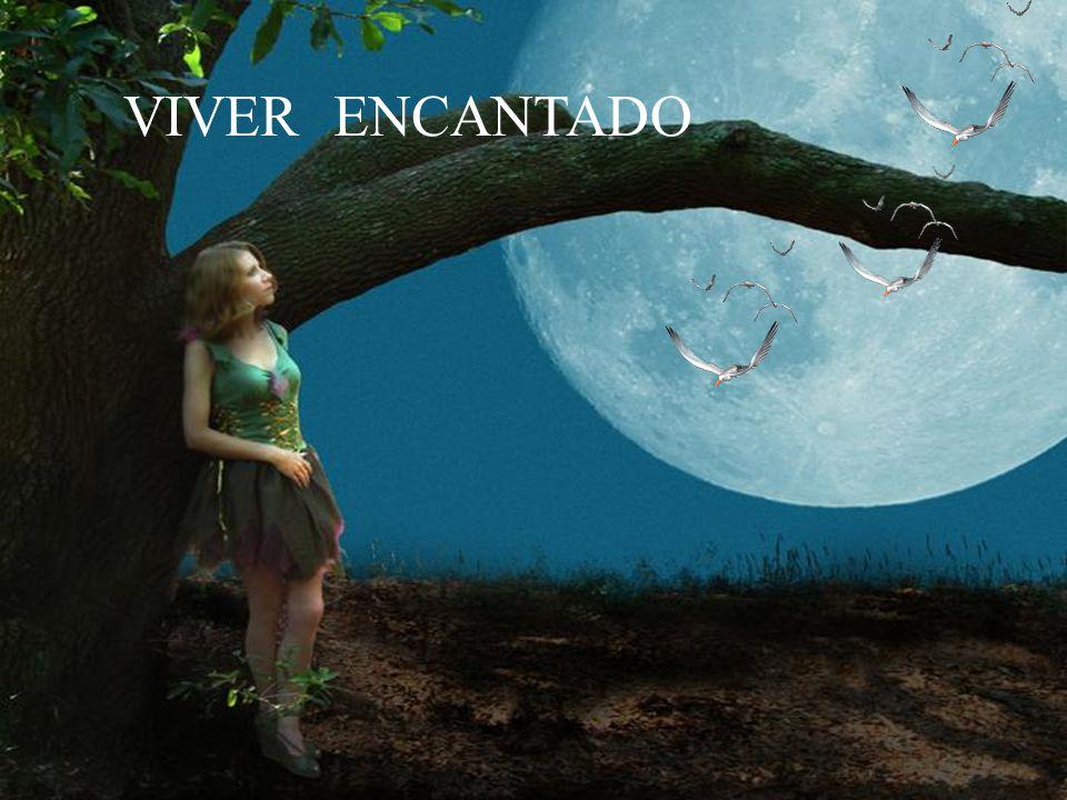 VIVER ENCANTADO