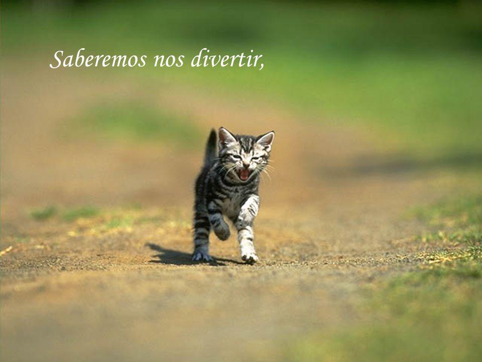 Então, frente a cada desafio, Mas sem desperdiçar o tempo Nem as novas oportunidades...