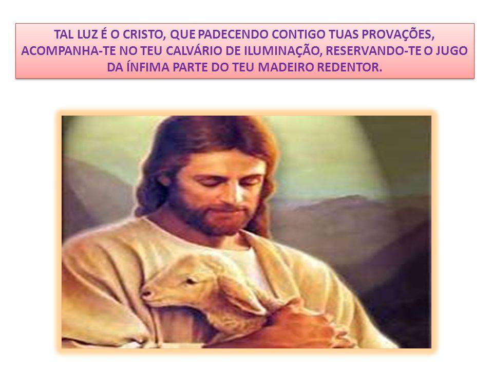 TAL LUZ É O CRISTO, QUE PADECENDO CONTIGO TUAS PROVAÇÕES, ACOMPANHA-TE NO TEU CALVÁRIO DE ILUMINAÇÃO, RESERVANDO-TE O JUGO DA ÍNFIMA PARTE DO TEU MADEIRO REDENTOR.