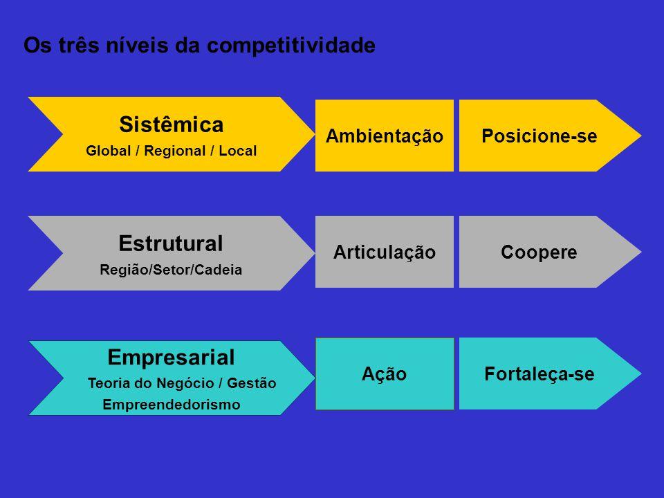 Posicione-se Coopere Ambientação Articulação Estrutural Região/Setor/Cadeia Sistêmica Global / Regional / Local Fortaleça-se Ação Empresarial Teoria d