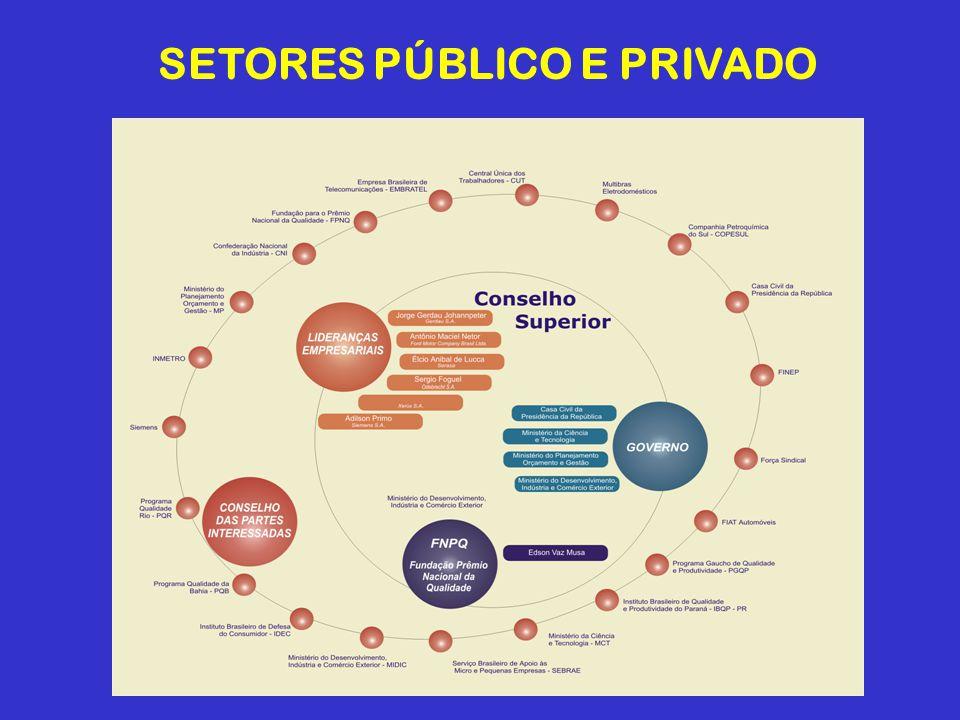SETORES PÚBLICO E PRIVADO