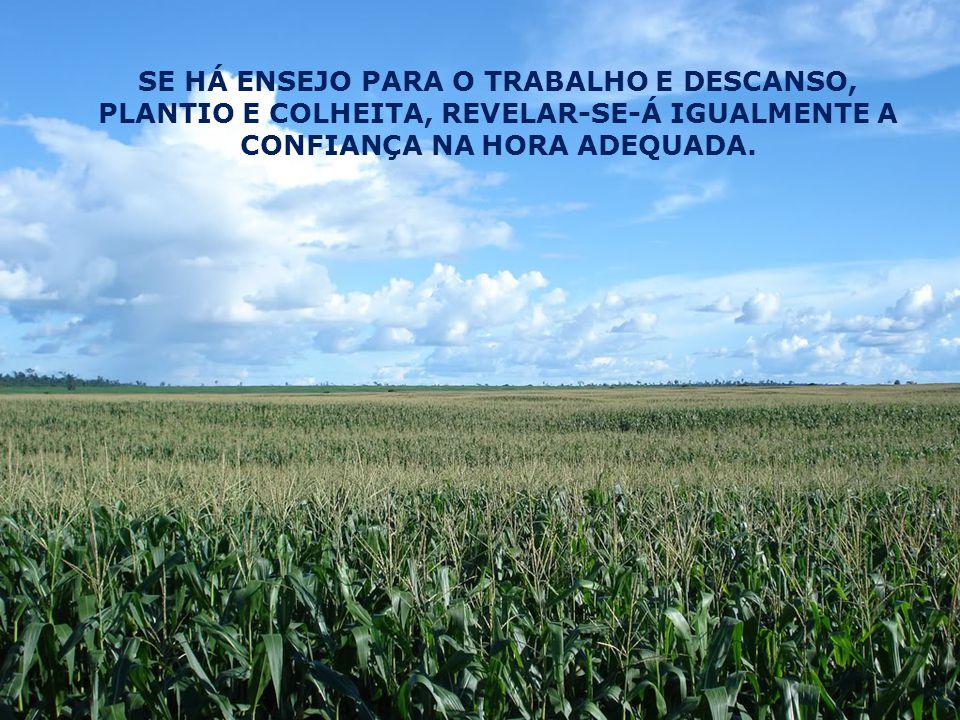 SE HÁ ENSEJO PARA O TRABALHO E DESCANSO, PLANTIO E COLHEITA, REVELAR-SE-Á IGUALMENTE A CONFIANÇA NA HORA ADEQUADA.
