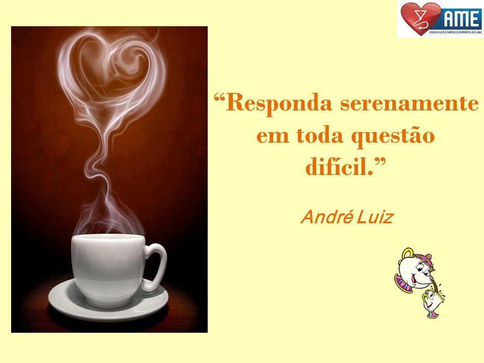 NÃO GRITE. CONSERVE A CALMA. (André Luiz)