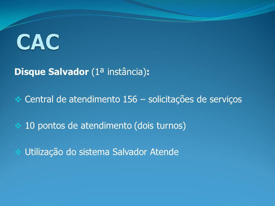 Disque Salvador (1ª instância): Central de atendimento 156 – solicitações de serviços 10 pontos de atendimento (dois turnos) Utilização do sistema Sal