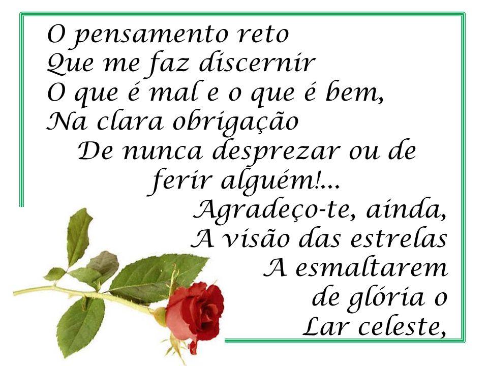 As flores do caminho, Os braços que me amparam E os gestos de carinho Dos corações queridos que me deste!...