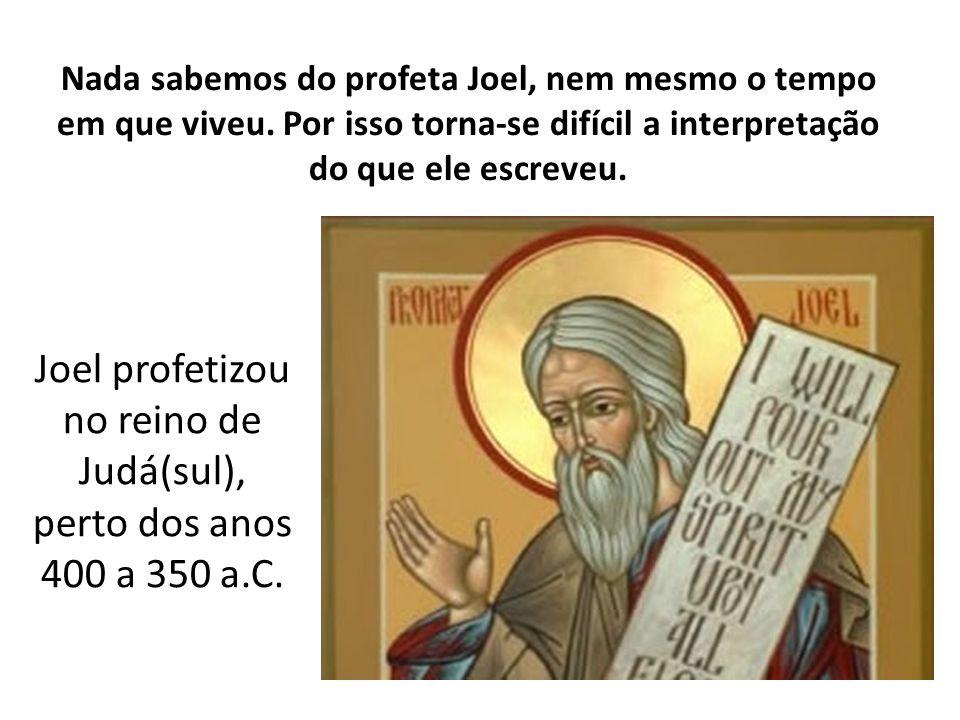 Nada sabemos do profeta Joel, nem mesmo o tempo em que viveu. Por isso torna-se difícil a interpretação do que ele escreveu. Joel profetizou no reino