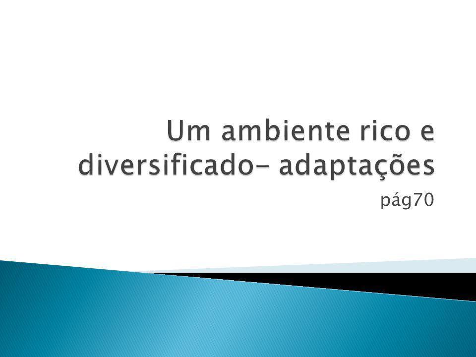 pág70