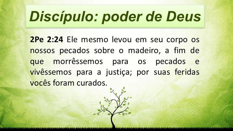 Discípulo: poder de Deus 2Pe 2:24 Ele mesmo levou em seu corpo os nossos pecados sobre o madeiro, a fim de que morrêssemos para os pecados e vivêssemo