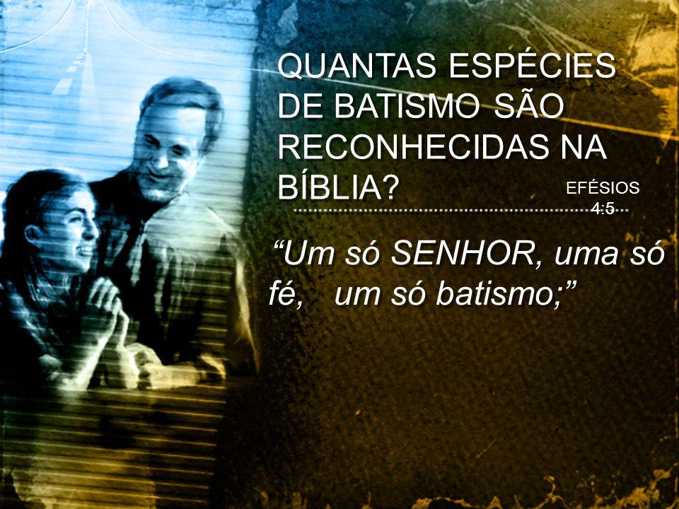 Um só SENHOR, uma só fé, um só batismo; QUANTAS ESPÉCIES DE BATISMO SÃO RECONHECIDAS NA BÍBLIA? EFÉSIOS 4:5