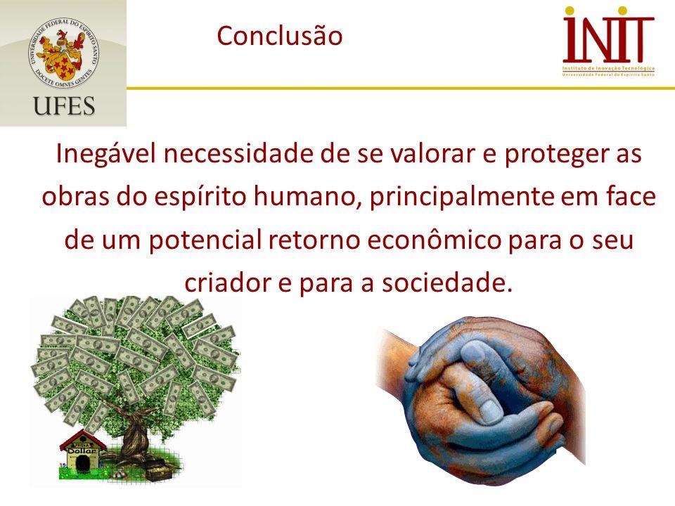 Conclusão Inegável necessidade de se valorar e proteger as obras do espírito humano, principalmente em face de um potencial retorno econômico para o seu criador e para a sociedade.