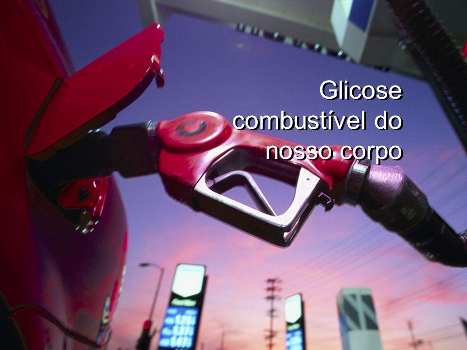 Glicose combustível do nosso corpo Glicose combustível do nosso corpo