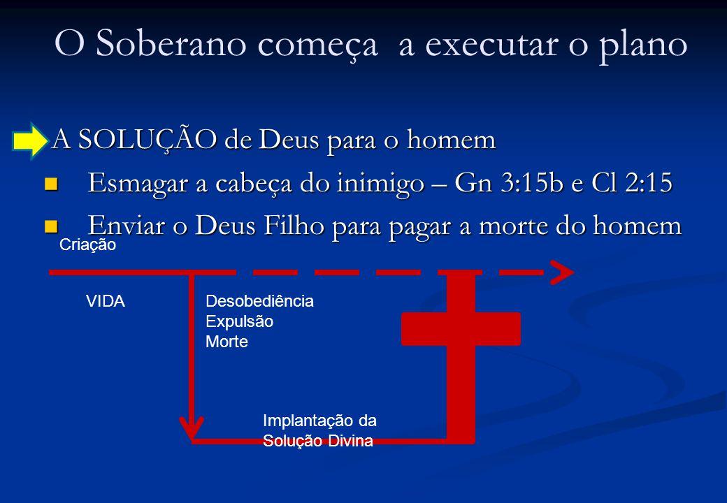 O Soberano começa a executar o plano A SOLUÇÃO de Deus para o homem A SOLUÇÃO de Deus para o homem Esmagar a cabeça do inimigo – Gn 3:15b e Cl 2:15 Esmagar a cabeça do inimigo – Gn 3:15b e Cl 2:15 Enviar o Deus Filho para pagar a morte do homem Enviar o Deus Filho para pagar a morte do homem Criação VIDADesobediência Expulsão Morte Implantação da Solução Divina