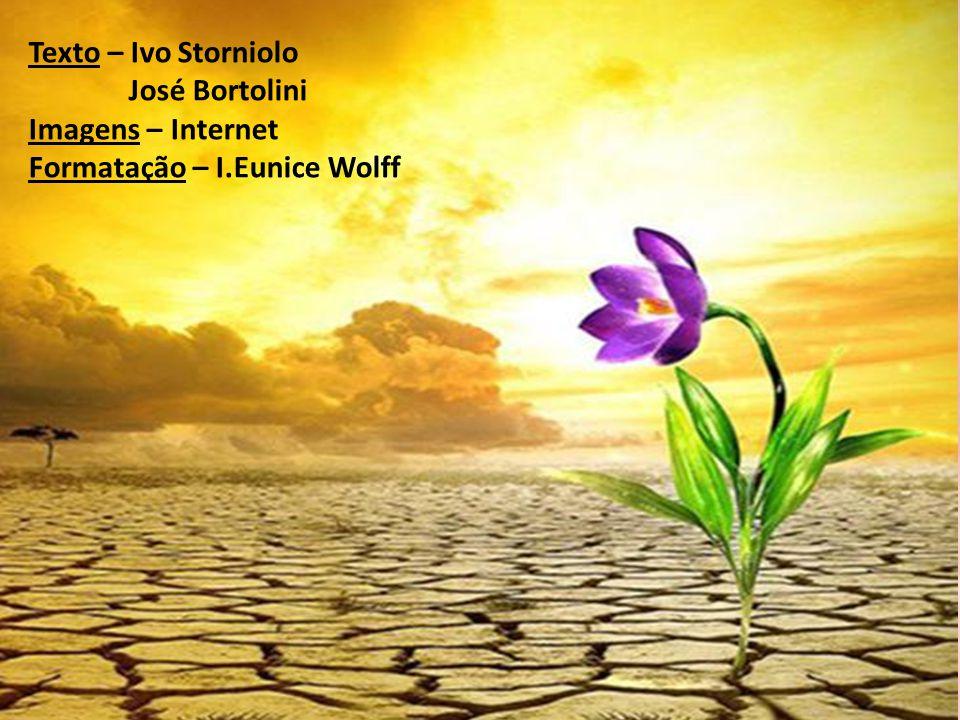 Texto – Ivo Storniolo José Bortolini Imagens – Internet Formatação – I.Eunice Wolff