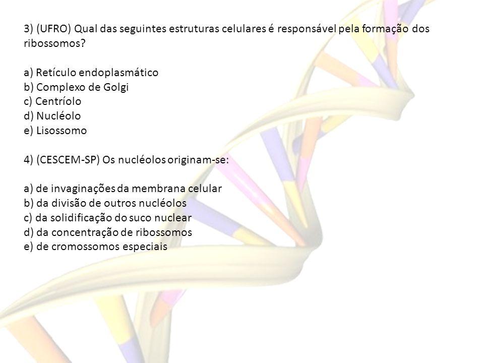 3) (UFRO) Qual das seguintes estruturas celulares é responsável pela formação dos ribossomos? a) Retículo endoplasmático b) Complexo de Golgi c) Centr