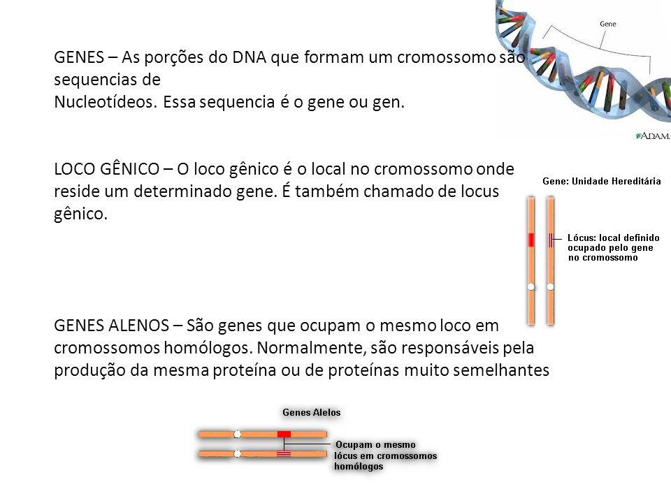 GENES – As porções do DNA que formam um cromossomo são sequencias de Nucleotídeos. Essa sequencia é o gene ou gen. LOCO GÊNICO – O loco gênico é o loc