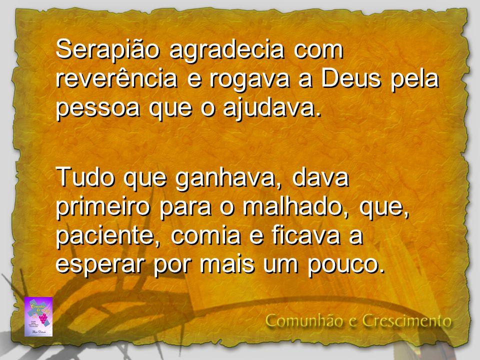 Serapião agradecia com reverência e rogava a Deus pela pessoa que o ajudava. Tudo que ganhava, dava primeiro para o malhado, que, paciente, comia e fi