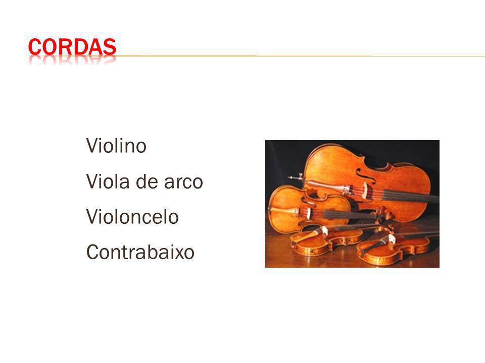 Violino Viola de arco Violoncelo Contrabaixo