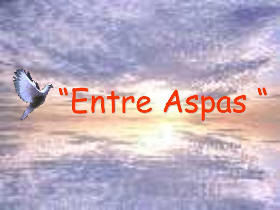 Entre Aspas