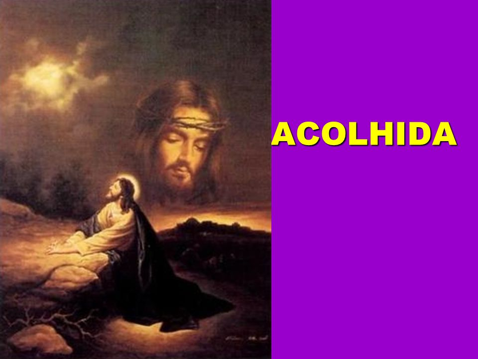 O Senhor nos guardará qual pastor a seu rebanho. TODOS
