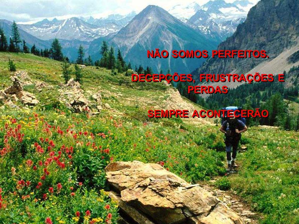 NÃO SOMOS PERFEITOS.DECEPÇÕES, FRUSTRAÇÕES E PERDAS SEMPRE ACONTECERÃO NÃO SOMOS PERFEITOS.