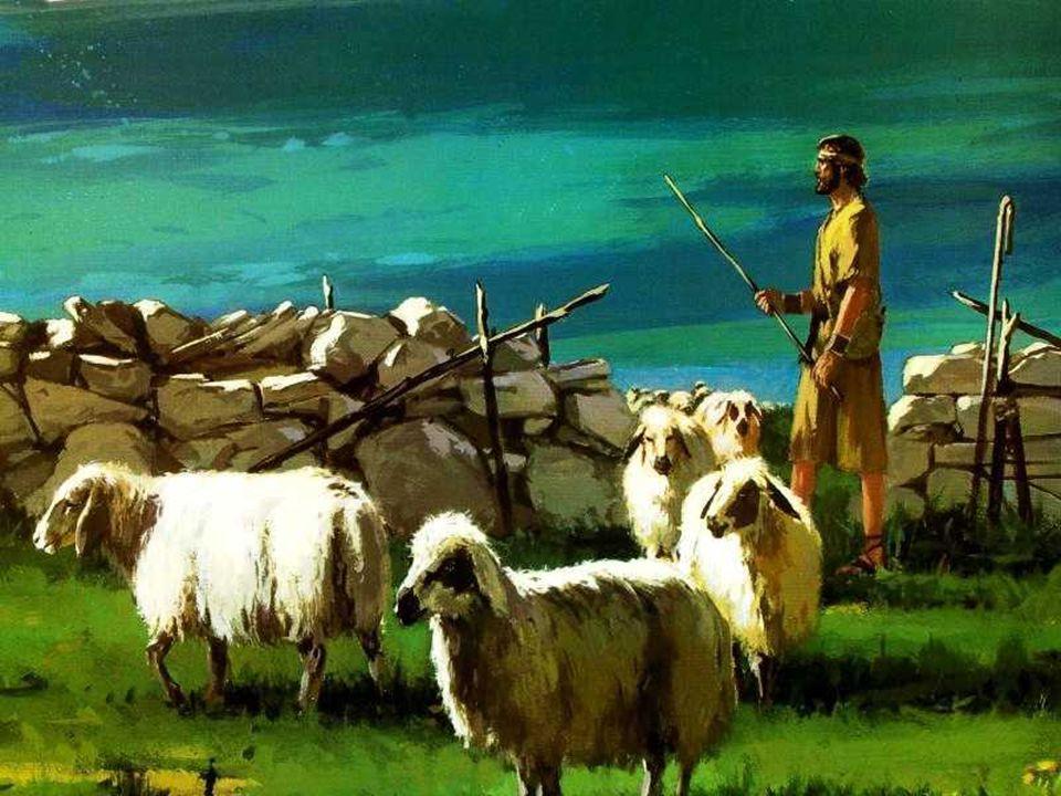 + As ovelhas do rebanho de Jesus devem escutar a voz do Pastor e segui-lo… Isso significa aderir a Jesus, percorrer o mesmo caminho dele, na entrega t