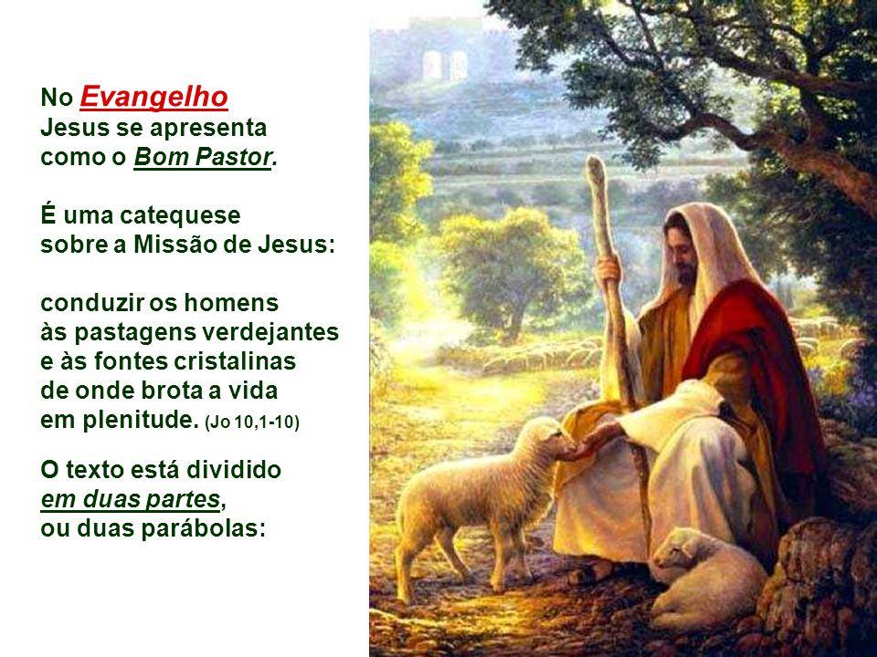 MEU DOMINGO Com a Palavra de Deus Meditada por: Pe.