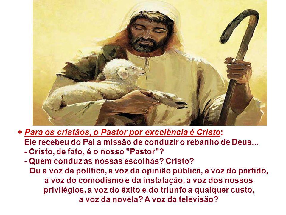 + Para os cristãos, o Pastor por excelência é Cristo: Ele recebeu do Pai a missão de conduzir o rebanho de Deus...