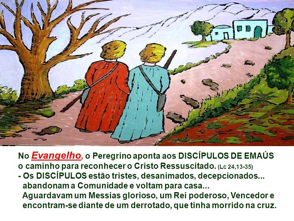 Na 1ª Leitura, a COMUNIDADE CRISTÃ transformada pelo Espírito, deixou a segurança das paredes do Cenáculo e prepara-se para dar testemunho de Jesus, e