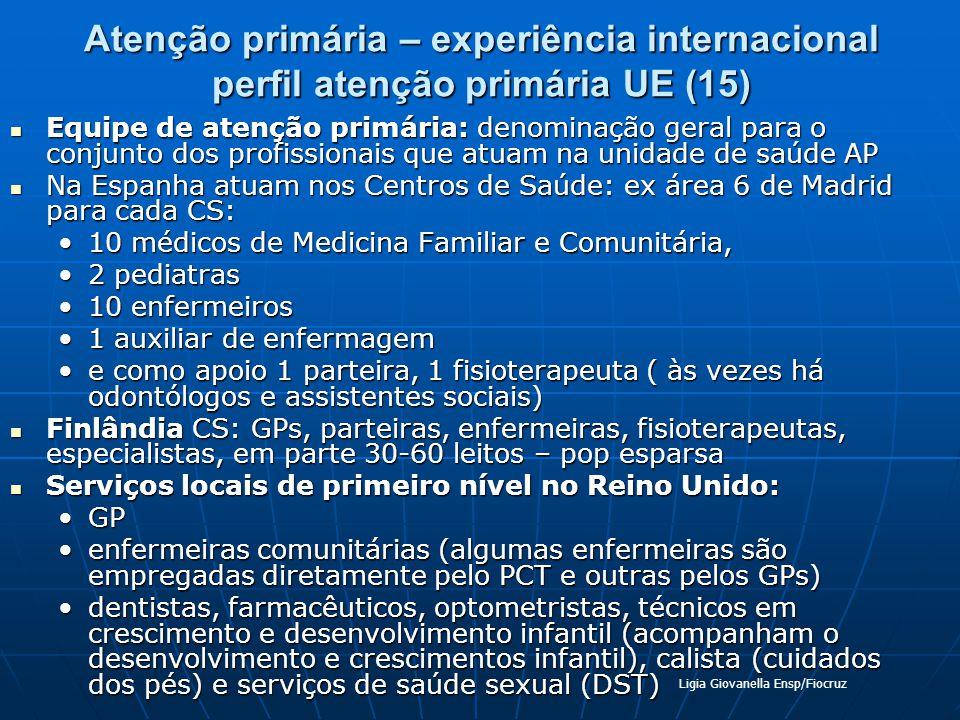 Atenção primária – experiência internacional perfil atenção primária UE (15) Equipe de atenção primária: denominação geral para o conjunto dos profiss