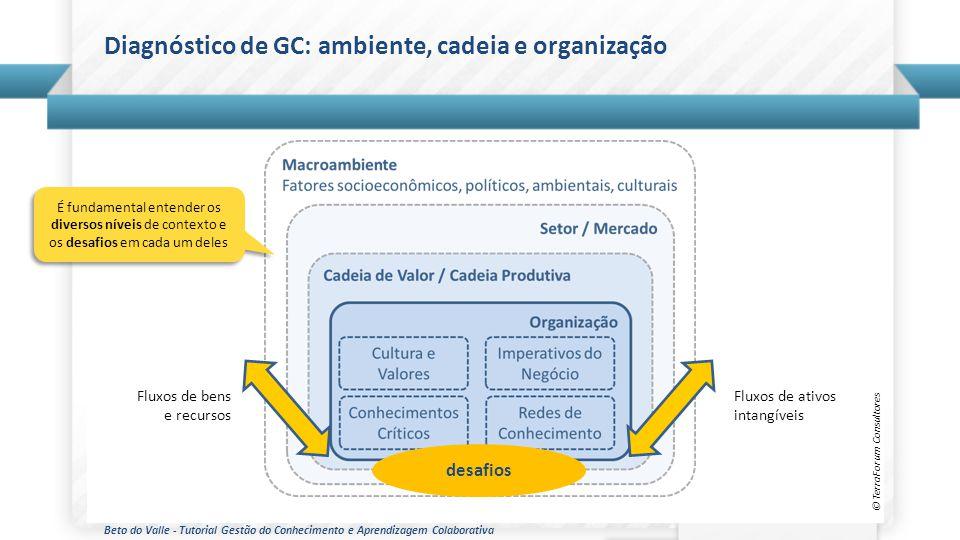 Beto do Valle - Tutorial Gestão do Conhecimento e Aprendizagem Colaborativa © TerraForum Consultores Diagnóstico de GC: ambiente, cadeia e organização