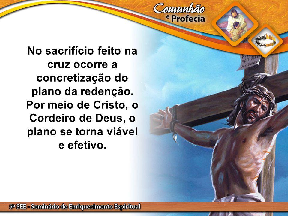 No sacrifício feito na cruz ocorre a concretização do plano da redenção. Por meio de Cristo, o Cordeiro de Deus, o plano se torna viável e efetivo.