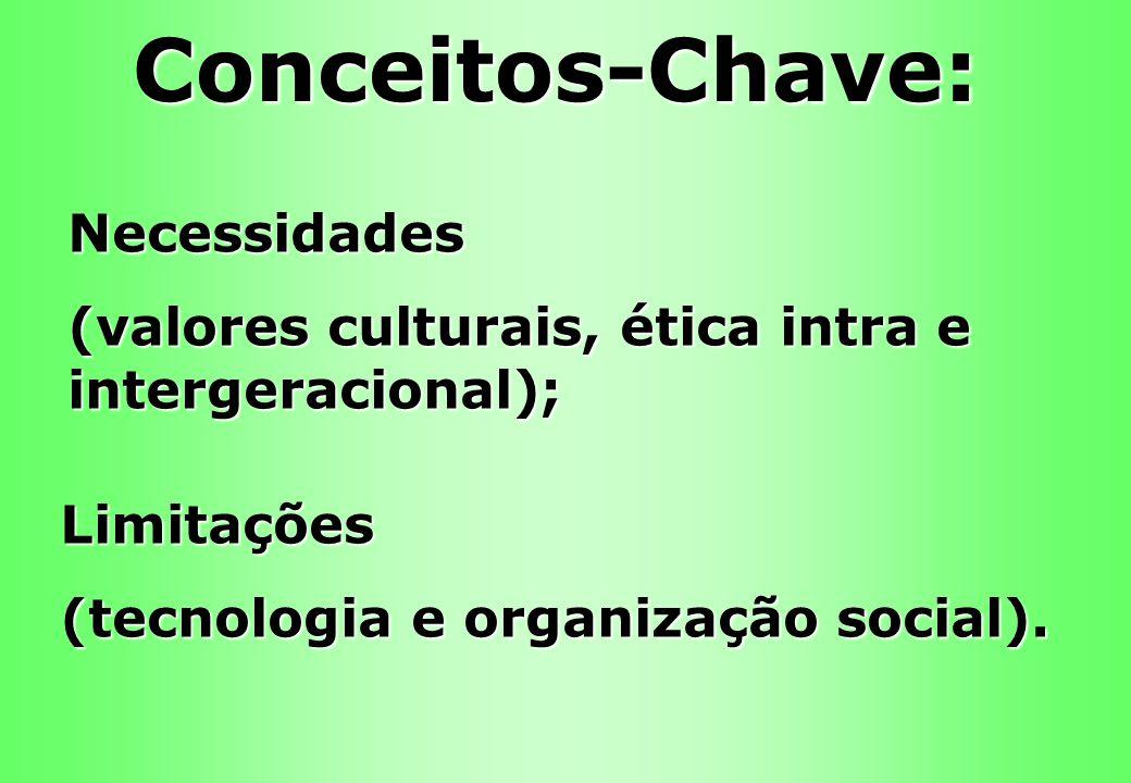 Necessidades (valores culturais, ética intra e intergeracional); Limitações (tecnologia e organização social). Conceitos-Chave: