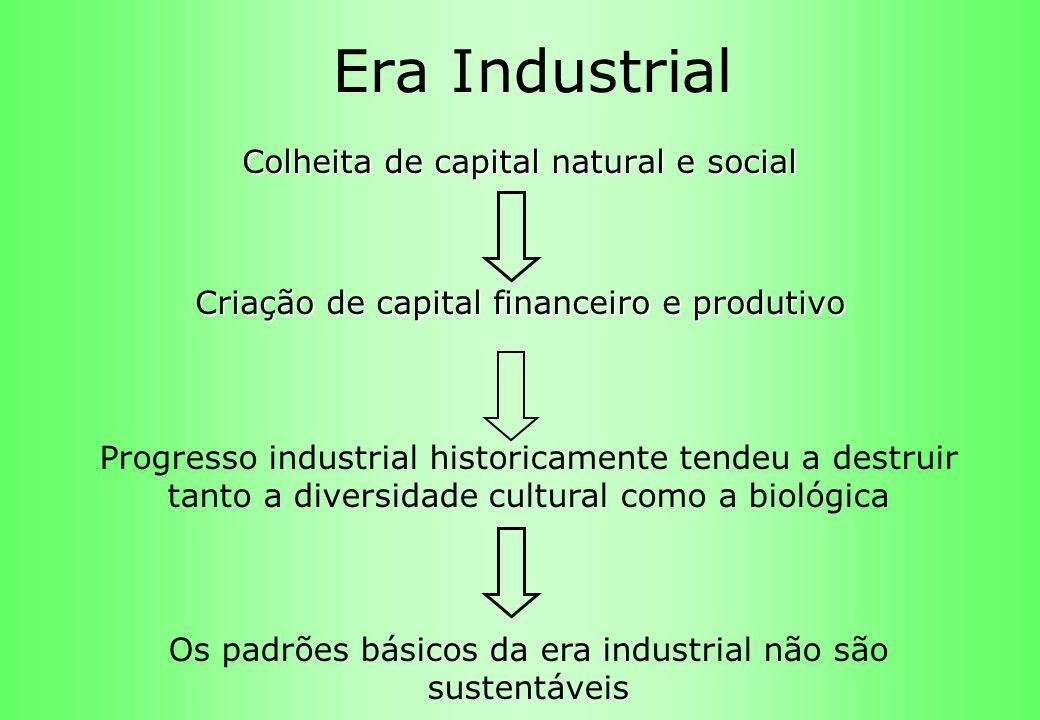 Era Industrial Colheita de capital natural e social Criação de capital financeiro e produtivo Progresso industrial historicamente tendeu a destruir ta