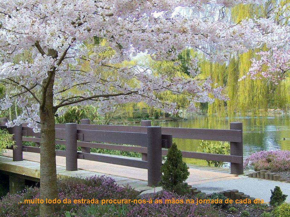...sintamos o frescor da primavera...