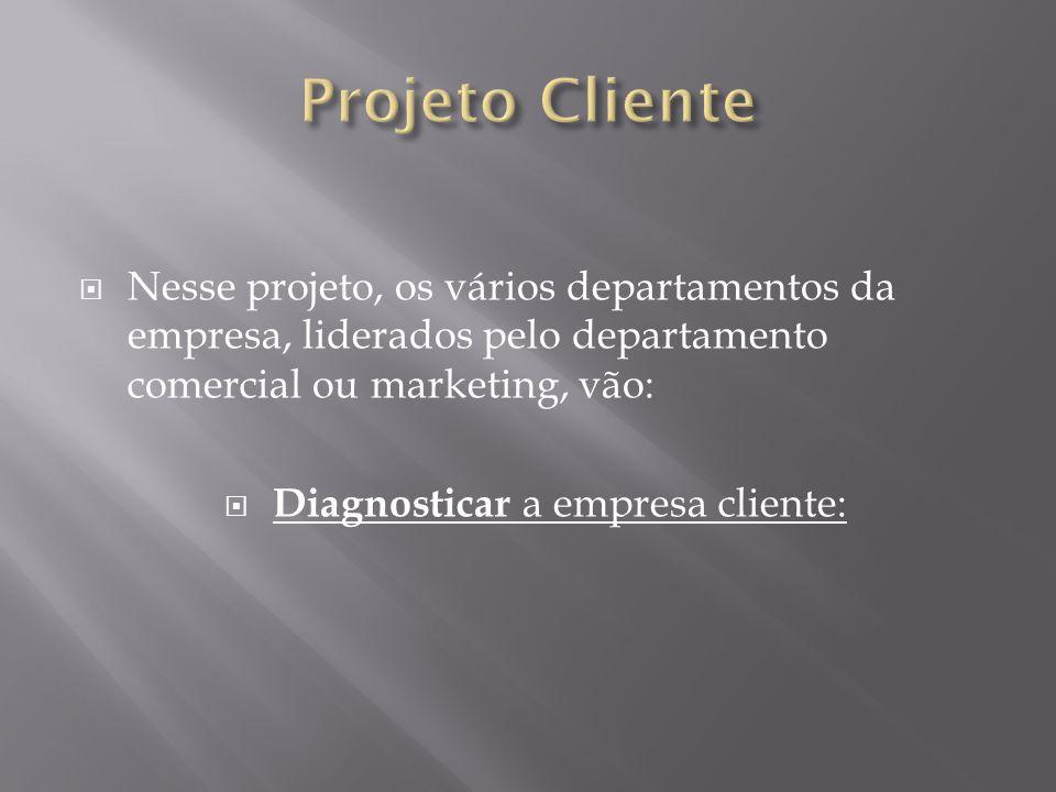 Nesse projeto, os vários departamentos da empresa, liderados pelo departamento comercial ou marketing, vão: Diagnosticar a empresa cliente: