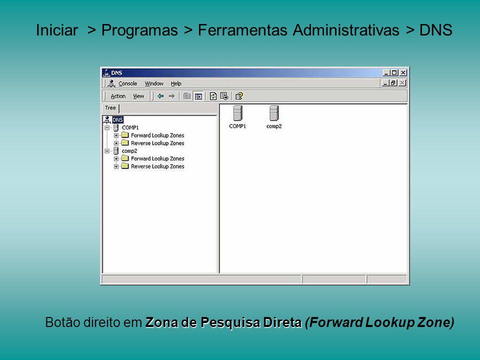 Nome da Zona Primaria de DNS Exemplo: fiec.com.br
