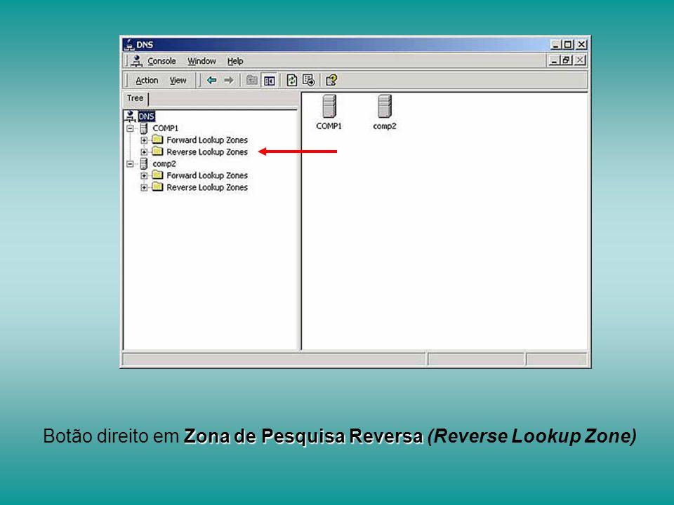 Zona de Pesquisa Reversa Botão direito em Zona de Pesquisa Reversa (Reverse Lookup Zone)