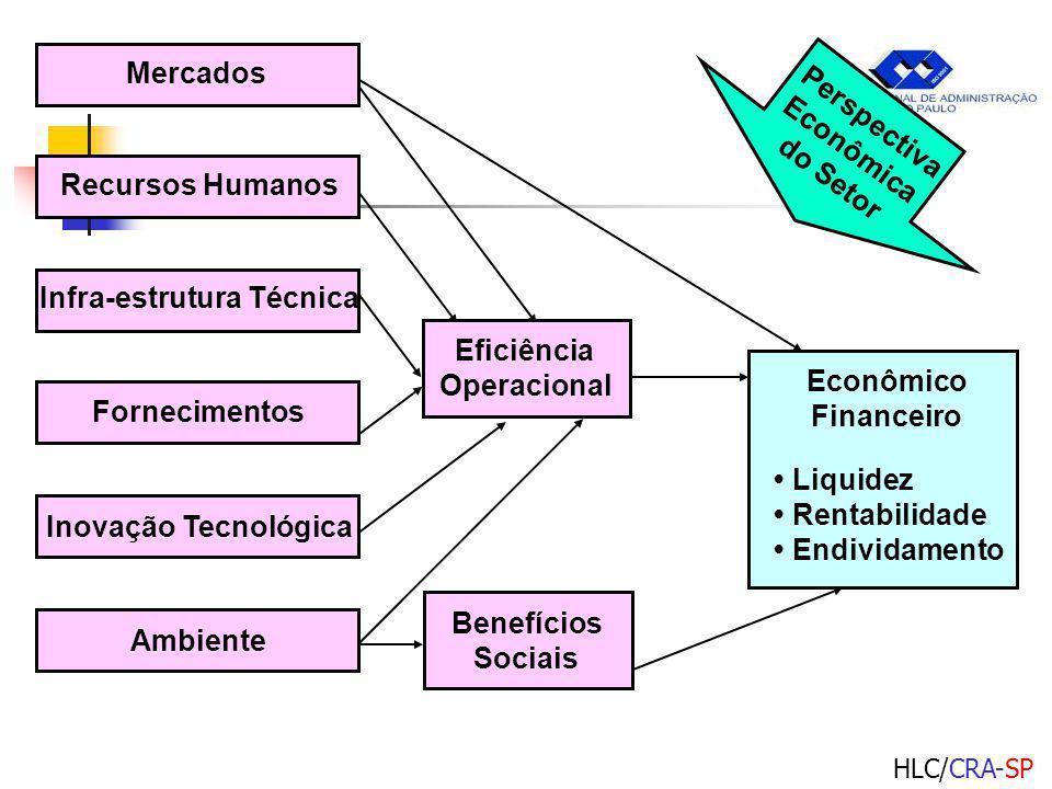 HLC/CRA-SP Liquidez Rentabilidade Endividamento Econômico Financeiro Perspectiva Econômica do Setor Mercados Recursos Humanos Infra-estrutura Técnica Fornecimentos Inovação Tecnológica Ambiente Eficiência Operacional Benefícios Sociais