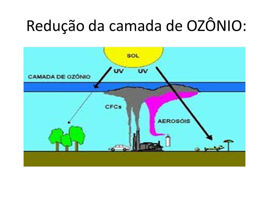 Redução da camada de OZÔNIO: