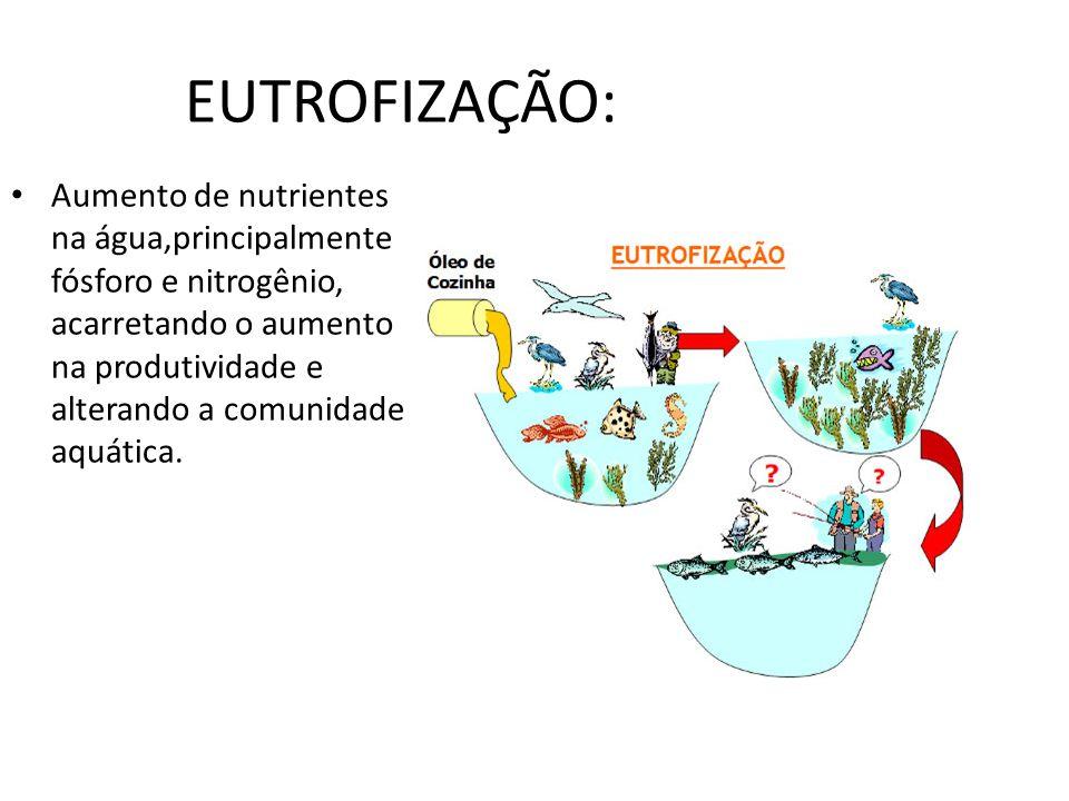 EUTROFIZAÇÃO: Aumento de nutrientes na água,principalmente fósforo e nitrogênio, acarretando o aumento na produtividade e alterando a comunidade aquát