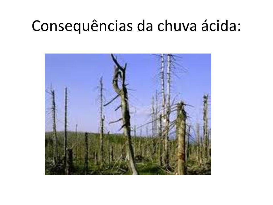 Consequências da chuva ácida: