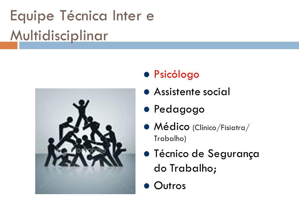 Equipe Técnica Inter e Multidisciplinar Psicólogo Assistente social Pedagogo Médico (Clínico/Fisiatra/ Trabalho) Técnico de Segurança do Trabalho; Outros