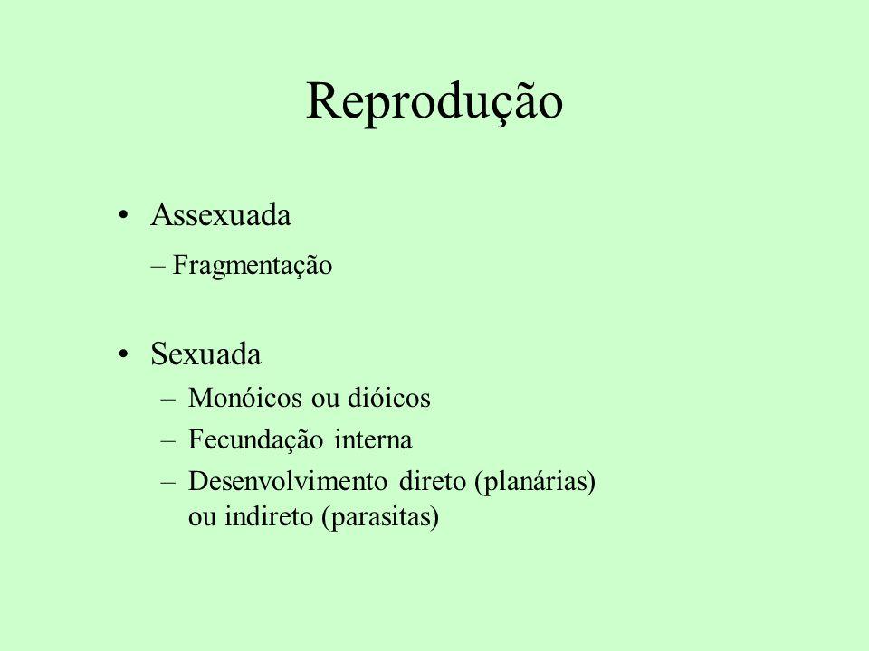 Reprodução Assexuada – Fragmentação Sexuada –Monóicos ou dióicos –Fecundação interna –Desenvolvimento direto (planárias) ou indireto (parasitas)