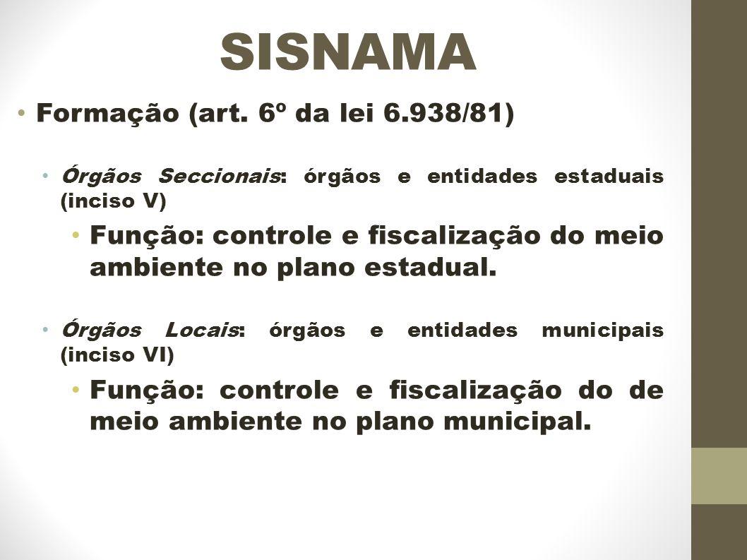 SISNAMA Formação (art.