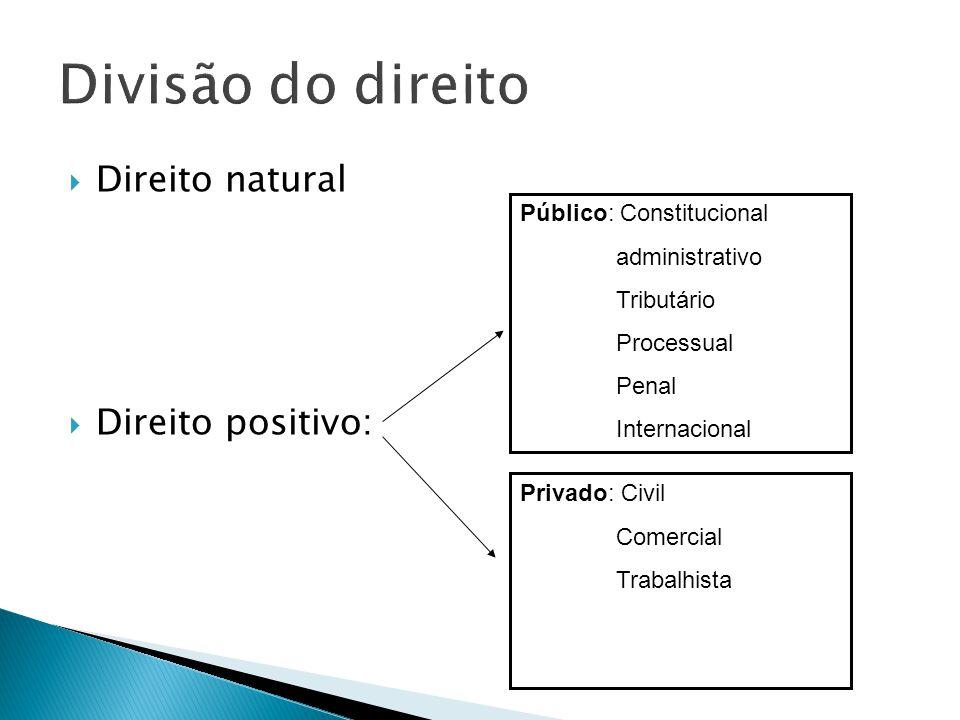 Direito natural Direito positivo: Público: Constitucional administrativo Tributário Processual Penal Internacional Privado: Civil Comercial Trabalhist