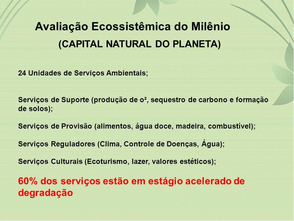 degradação (15 serviços). Avaliação Ecossistêmica do Milênio (CAPITAL NATURAL DO PLANETA) 24 Unidades de Serviços Ambientais; Serviços de Suporte (pro