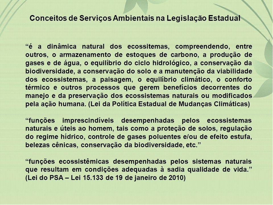Conceitos de Serviços Ambientais na Legislação Estadual é a dinâmica natural dos ecossitemas, compreendendo, entre outros, o armazenamento de estoques
