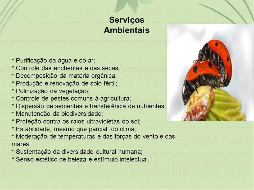 degradação (15 serviços).