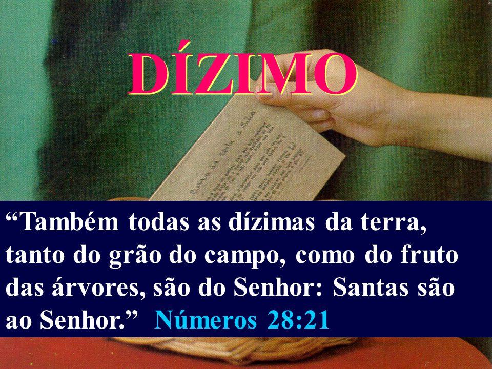 E ME FARÃO UM SANTUÁRIO, PARA QUE EU POSSA HABITAR NO MEIO DELES. SEGUNDO O MODELO QUE TE MOSTREI NO MONTE. ÊXODO 25:8-9. PÁTIO