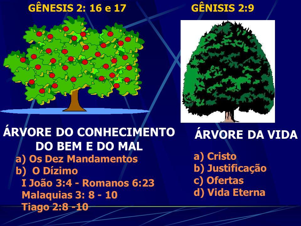 CRISTO É A ÁRVORE DA VIDA CRISTO é a fonte de nossa vida, a fonte da imortalidade. É a Árvore da Vida, e a todos os que vão a Ele lhes reparte vida es